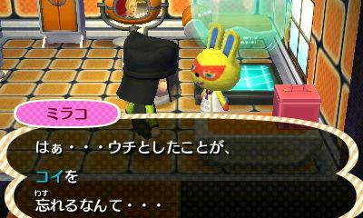 Nintendo3DS_20121122142603.JPG
