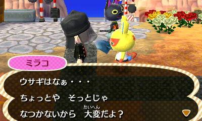 Nintendo3DS_20121124144709.JPG