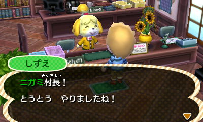 Nintendo3DS_20121207122948.JPG