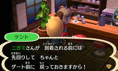 Nintendo3DS_20121209215014.JPG