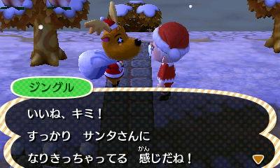 Nintendo3DS_20121224182840.JPG