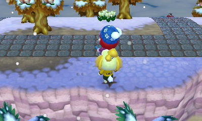 Nintendo3DS_20121229120745.JPG